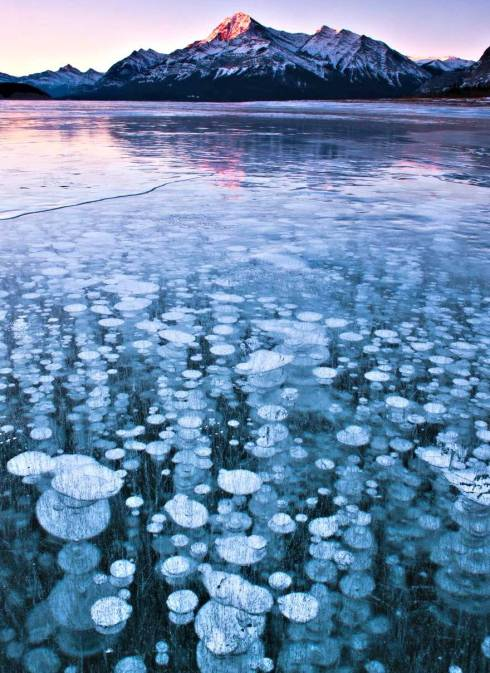 Frozen Air Bubbles in Abraham Lake 2
